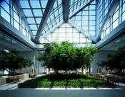 Hotel Park Hyatt Tokyo de 'Lost in Traslation'