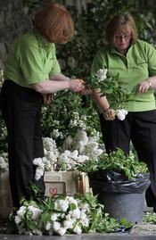 Colocadas las flores para la Boda Real Británica