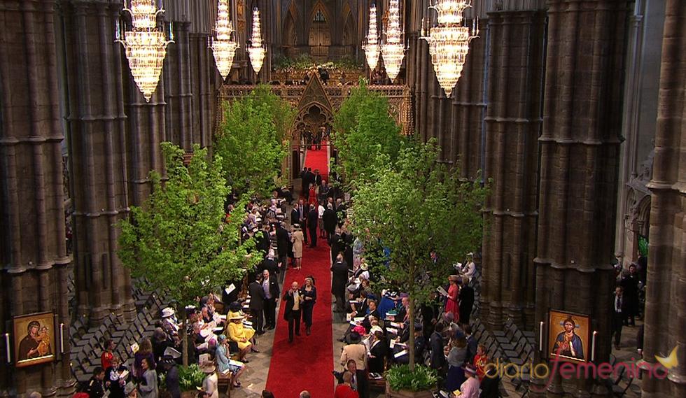 Árboles en el interior de la Abadía de Westminster en la Boda Real