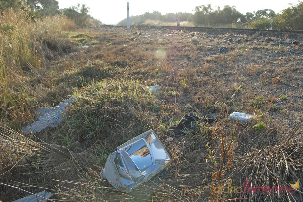 Restos del coche de Ortega Cano en el lugar de su accidente