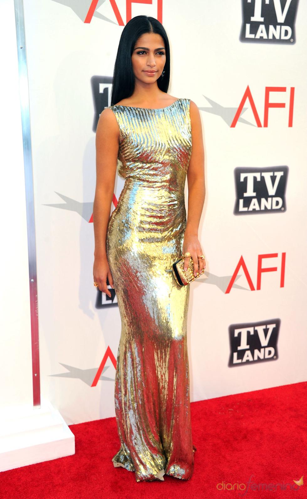 Camila Alves en los Premios AFI 2011