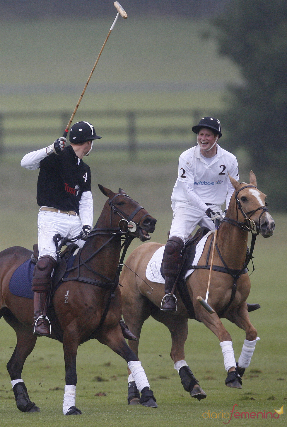 Los Príncipes Guillermo y Harry de Inglaterra en un partido de polo