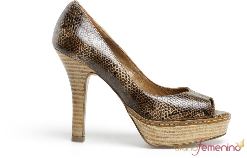 zapato con print de cocodrilo de Lodi