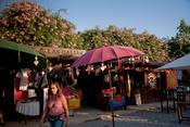 El exótico Mercadillo de Las Dalias cumple 25 años