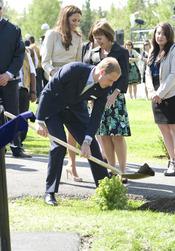 Guillermo de Inglaterra planta un árbol en Canadá