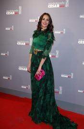 Bérénice Bejo en la alfombra roja de los César 2013