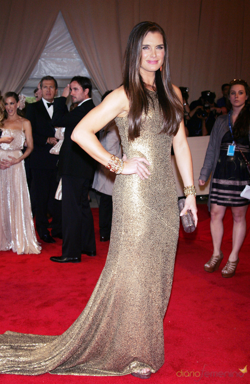 Brooke Shields en la gala del Costume Institute