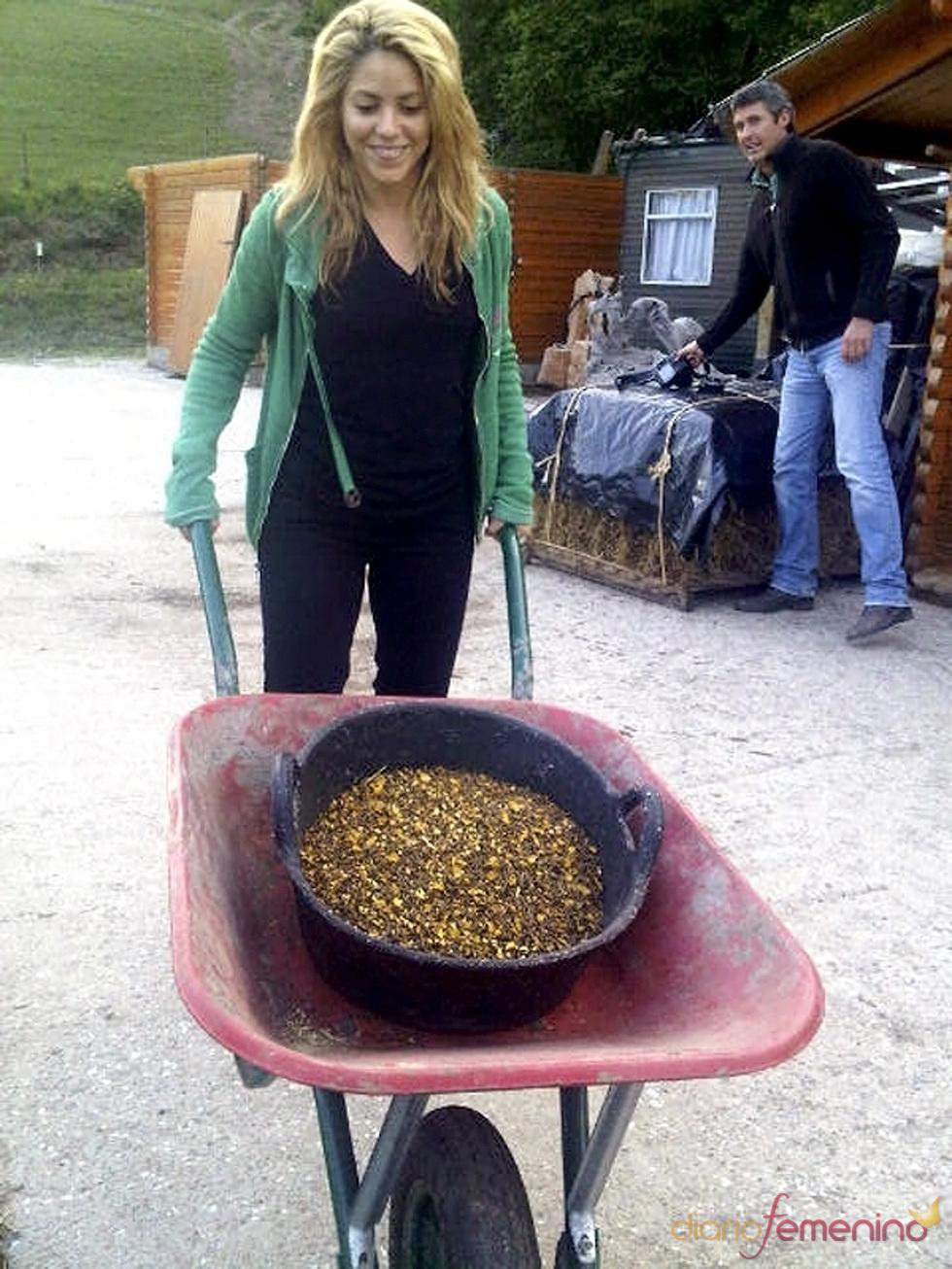 Shakira, de incógnito en Gerona