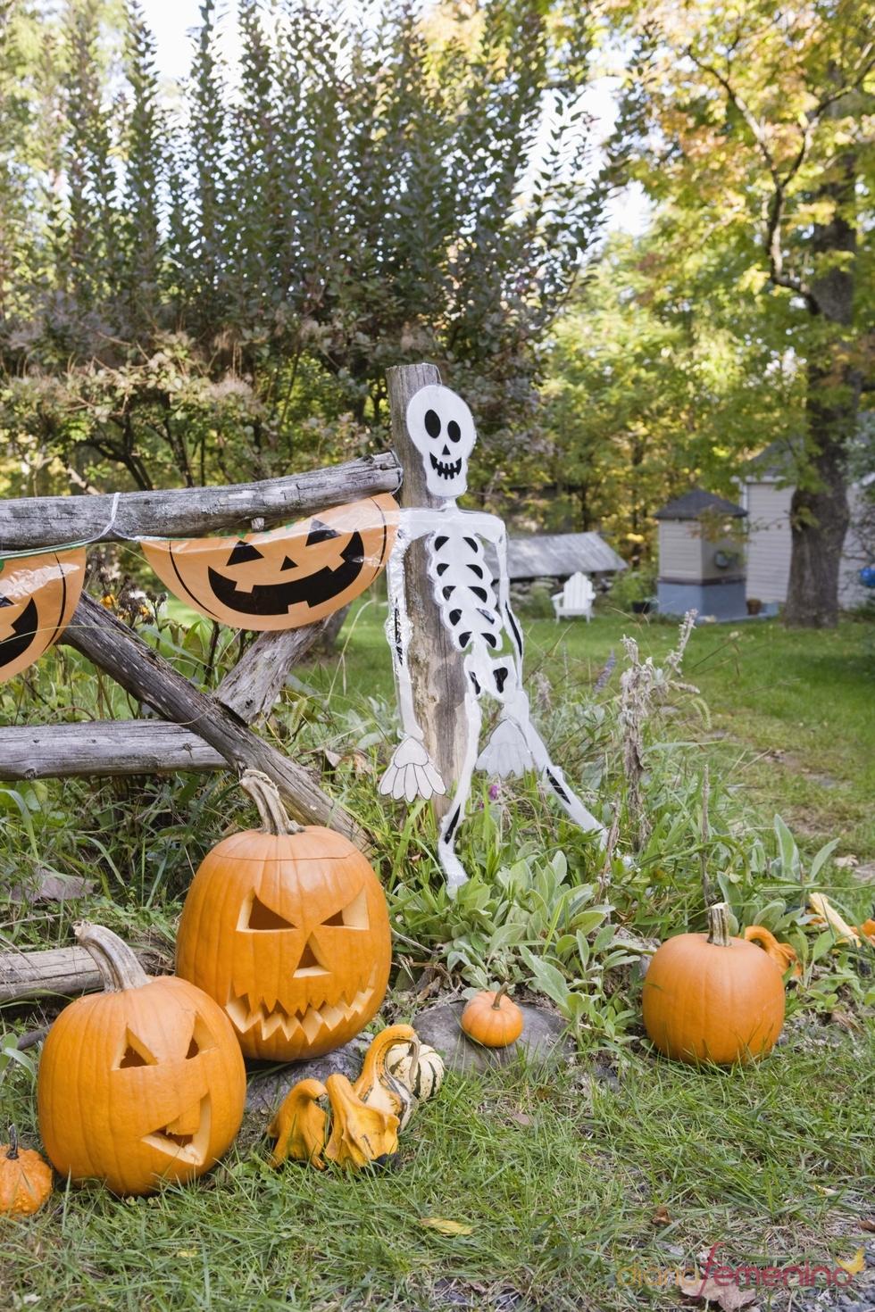 Jardín decorado para Halloween con esqueleto y calabazas