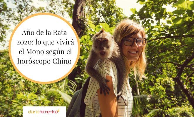 Horóscopo Chino 2020 De Mono Predicciones En El Año De La Rata