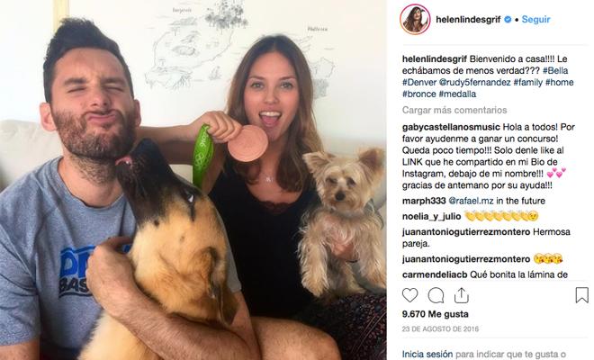 Te presentamos a los perros de las celebrities
