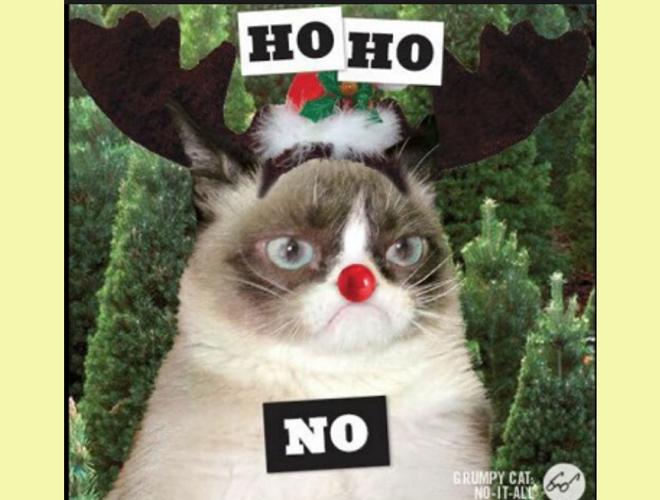 Los Memes Más Locos Para Felicitar La Navidad Y El Año Nuevo