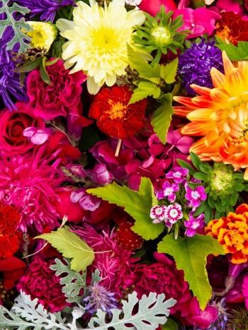 Significado de soñar con flores: la expresión de la alegría en tus sueños