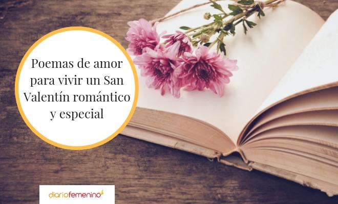 46 Poemas De San Valentin Versos De Amor Para El 14 De Febrero