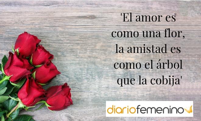 102 Frases Para San Valentín 2019 Preciosos Mensajes De Amor