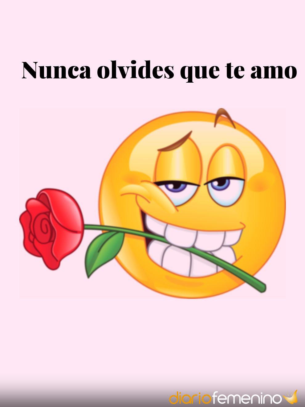 Whatsapp Frases De Amor Con Emoticonos Para Mandar A Tu Novio