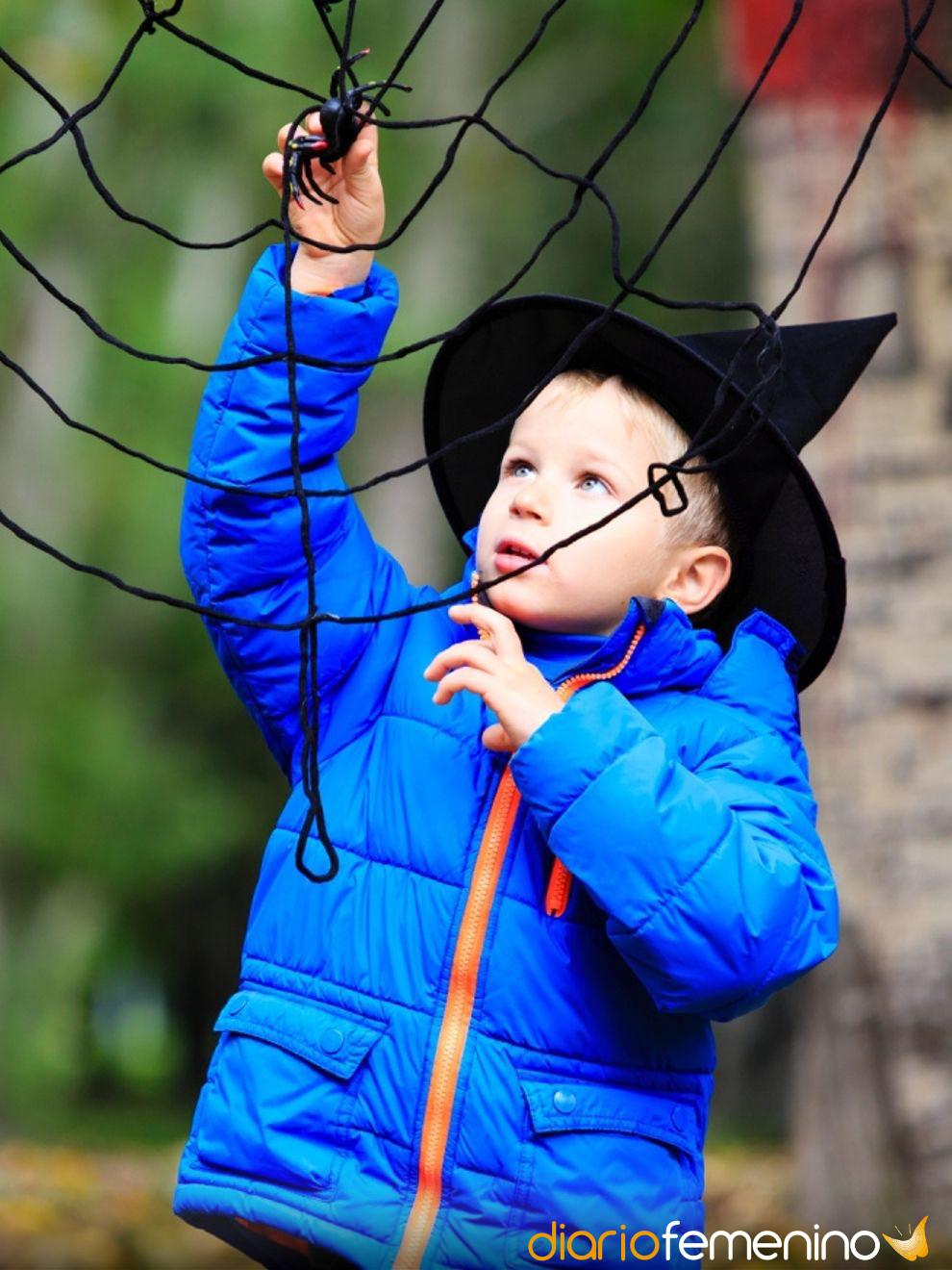 Juegos para Halloween: el rescate de la araña