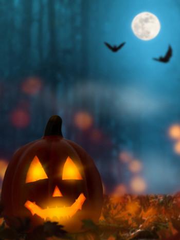 41 aterradoras frases de Halloween: felicitaciones no aptas para miedosos
