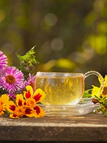 Plantas medicinales diuréticas para adelgazar