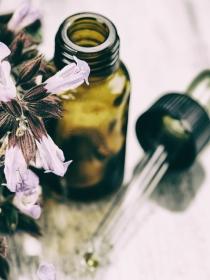 Fitoterapia: la medicina de las plantas medicinales