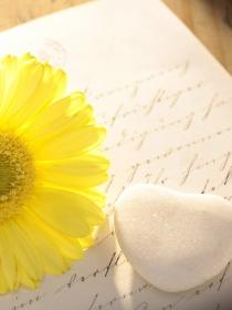 Poemas de amor para mujeres: dedícale las palabras más románticas