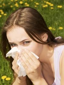 Remedios caseros para las alergias nasales