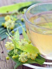 Plantas medicinales: remedios naturales para el dolor de garganta