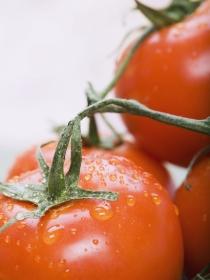 La dieta detox del tomate: el régimen ideal para depurar el sistema digestivo