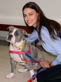 Irina Shayk, feliz sin Cristiano, promueve la adopción de animales