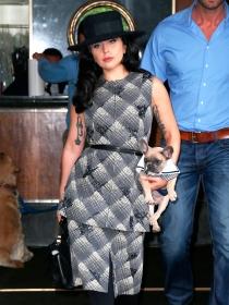 Perros de famosos: Lady Gaga, encantada con sus bulldog franceses
