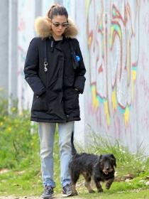 Perros de famosos: el teckel de Blanca Suárez