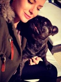 Perros de famosos: La China Suárez, encantada con su bulldog francés