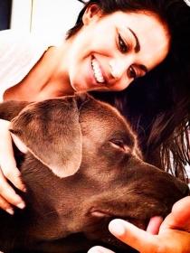 Perros de famosos: Choco, el Labrador de Lara Álvarez
