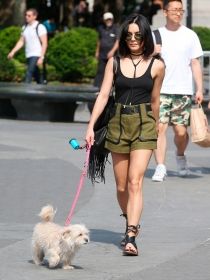 Perros de famosos: Vanessa Hudgens y su caniche