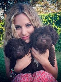 Perros de famosos: Edurne y sus perritos de agua