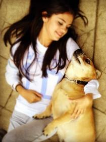 Perros de famosos: Baylor, el Husky de Selena Gomez