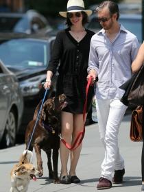 Perros de famosos: el Spaniel-Terrier y Labrador de Anne Hathaway