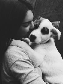 Perros de famosos: los preciosos labradores de Kendall Jenner