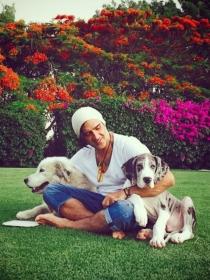 Perros de famosos: Kallum, el Gran Danés de Alejandro Fernández