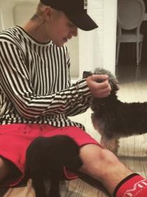 Perros de famosos: Justin Bieber, la maltipoo Esther y el labrador Phil