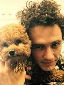 Perros de famosos: Ruly, el caniche marrón de James Franco
