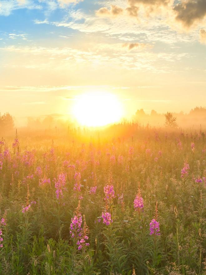 Significado de so ar con un amanecer da la bienvenida a la luz - Menstruacion dos veces al mes ...