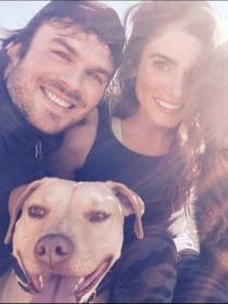 Perros de famosos: las mascotas de Nikki Reed e Ian Somerhalder