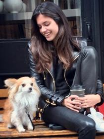 Perros de famosos: Luigi, el chihuahua de pelo largo de Sara Sampaio