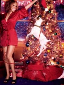 Perros de famosos: los Jack Russells, la obsesión de Mariah Carey