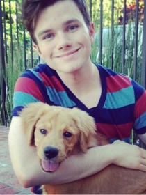 Perros de famosos: Cooper, el golden retriever de Chris Colfer de Glee