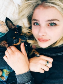 Perros de famosos: Pearl, la pinscher miniatura de Chloe Grace Moretz