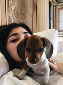 Perros de famosos: Penny, el nuevo cachorro de Kylie Jenner
