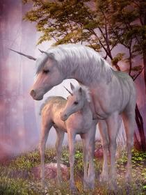 Soñar con unicornios: tu mundo de fantasía