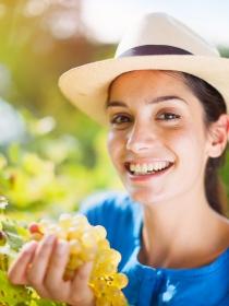 El significado de soñar con comer uvas: momentos de prosperidad